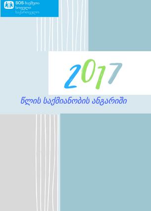 2017 წლის საქმიანობის ანგარიში